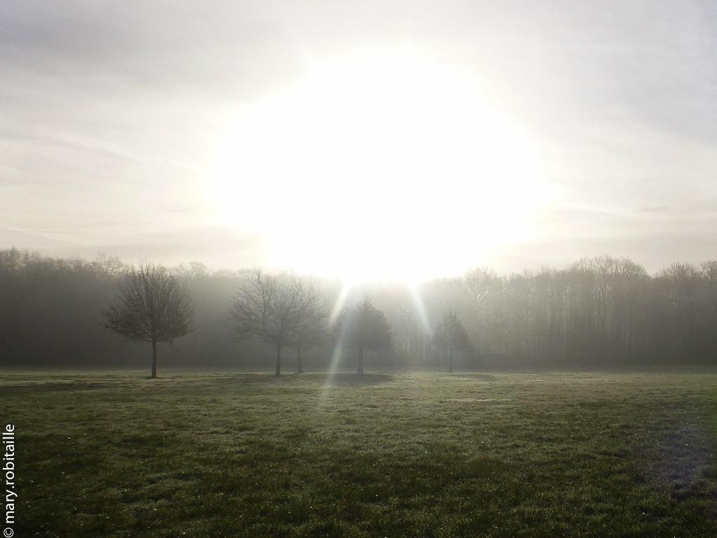 Soleil naissant